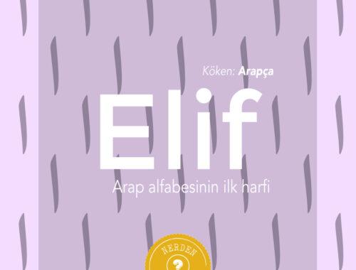 """Elif"" Nerden Geliyo"
