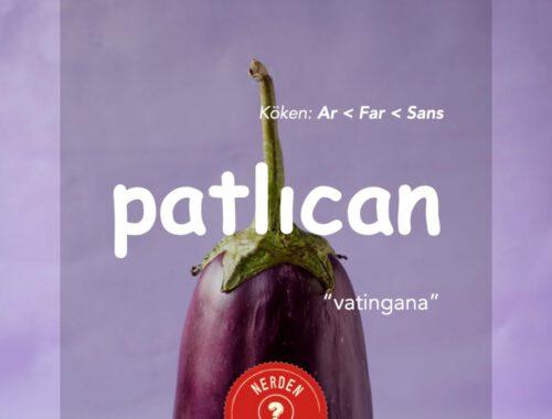 """""""Patlıcan"""" NerdenGeliyo?"""