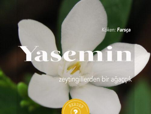 Nerdenliyo - Yasemin