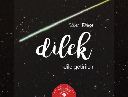 """""""Dilek"""" Nerden Geliyo"""